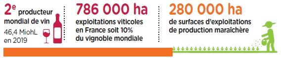 Marché français - SITEVI