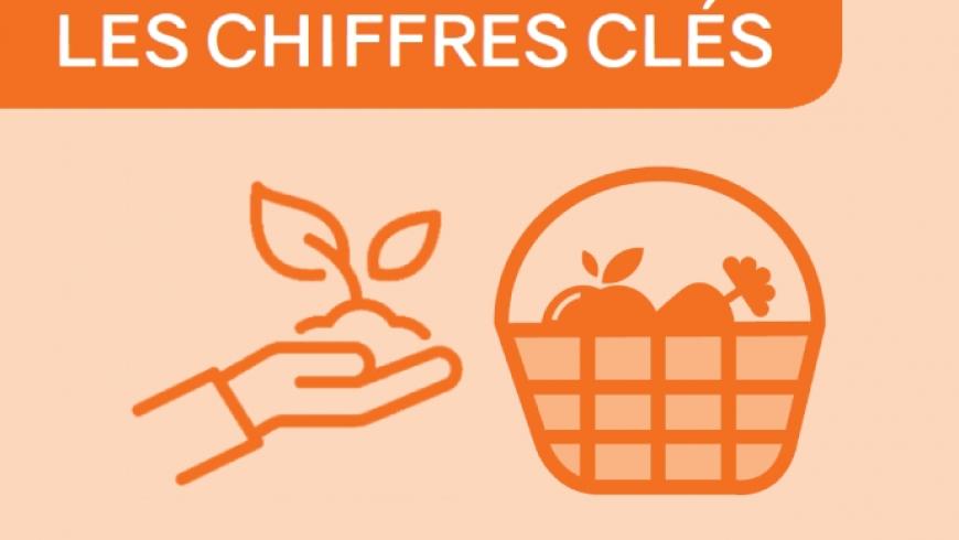 Chiffres clés fruits-légumes 2019