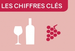 Chiffres clés vigne-vin 2019