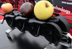Photo filière fruits-légumes
