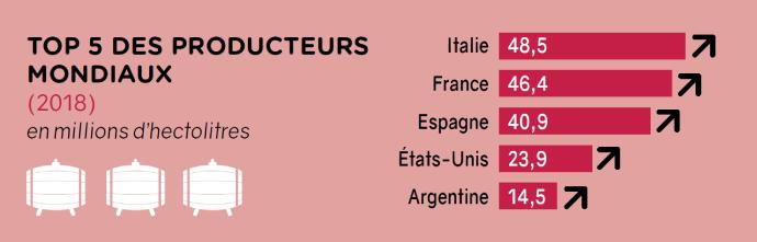 Top 5 des producteurs mondiaux dans la filière vigne-vin